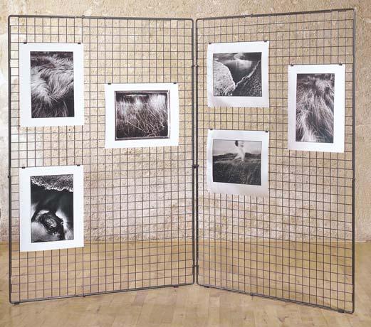 dpc polyvalent reunion grille d 39 exposition sans pieds. Black Bedroom Furniture Sets. Home Design Ideas