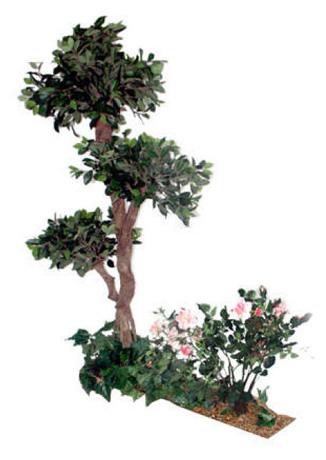 Composition florale FICUS - ROSIERS - LIERRE VERT